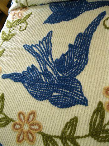 Blue swallow motel 17
