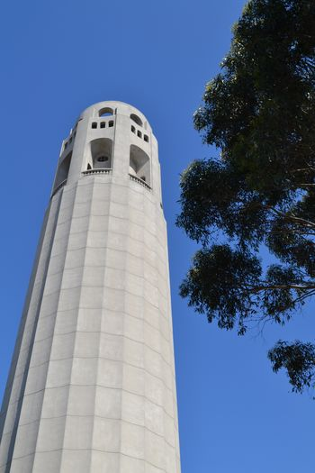 Coit tower 4
