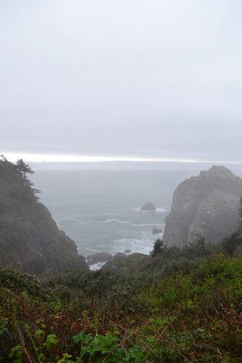 2012-04-20 CA Coast and Redwoods 16