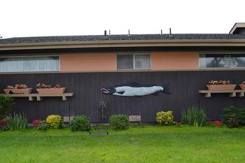 2012-04-20 CA Coast and Redwoods 36