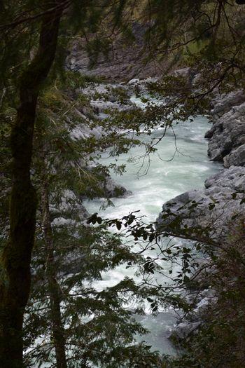 2012-04-20 CA Coast and Redwoods 38